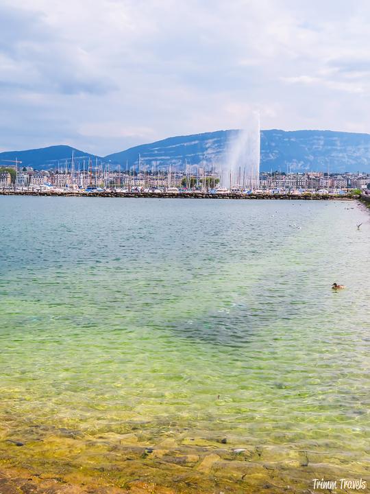 Clear Waters of Lake Geneva