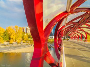 Five Interesting Things To Do in Calgary, AB, Canada