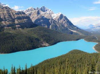 Driving the Icefields Parkway: Lake Louise to Athabasca Glacier