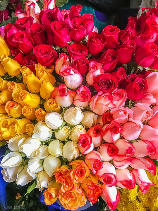 bin of multi-color roses at a market in Cuzco Peru