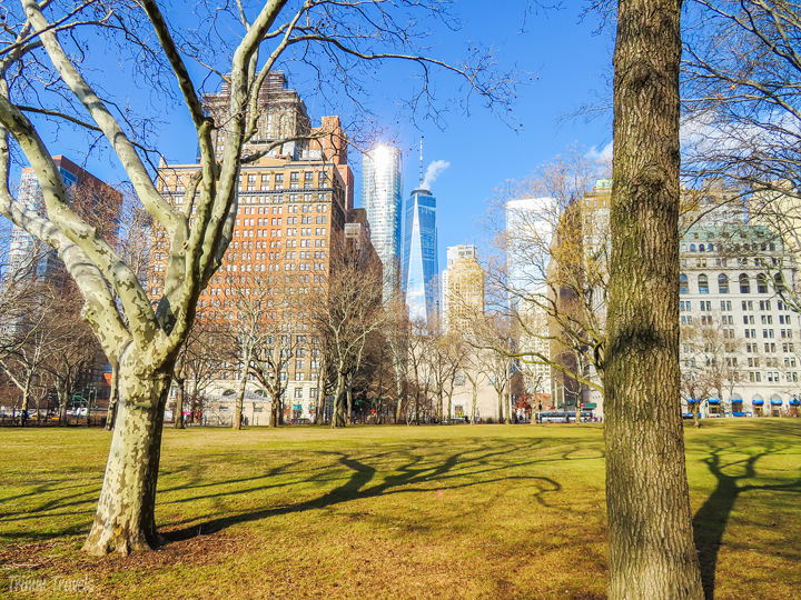 If you're wanting to take that first solo trip but aren't sure how to plan it, where to go or what to do, this guide is what you are looking for! The account of my first solo trip to NYC provides you with a great destination, gives you steps for planning and lays out a comprehensive itinerary! #nyc #newyorkcity #newyork #usa #solo #solotravel #travelguide #itinerary #travelplanning #destination #travel