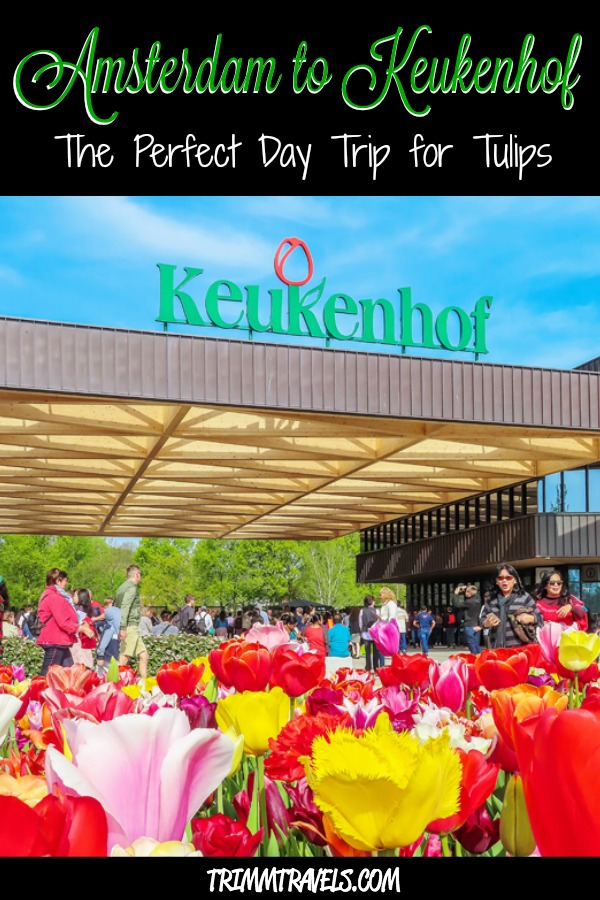 You've always dreamed of seeing those gorgeous tulips in all their glory in The Netherlands. Here is the perfect, easy day trip from Amsterdam to Keukenhof! #amsterdam #keukenhof #netherlands #holland #tulips #daytrip #europe #travel #destinations